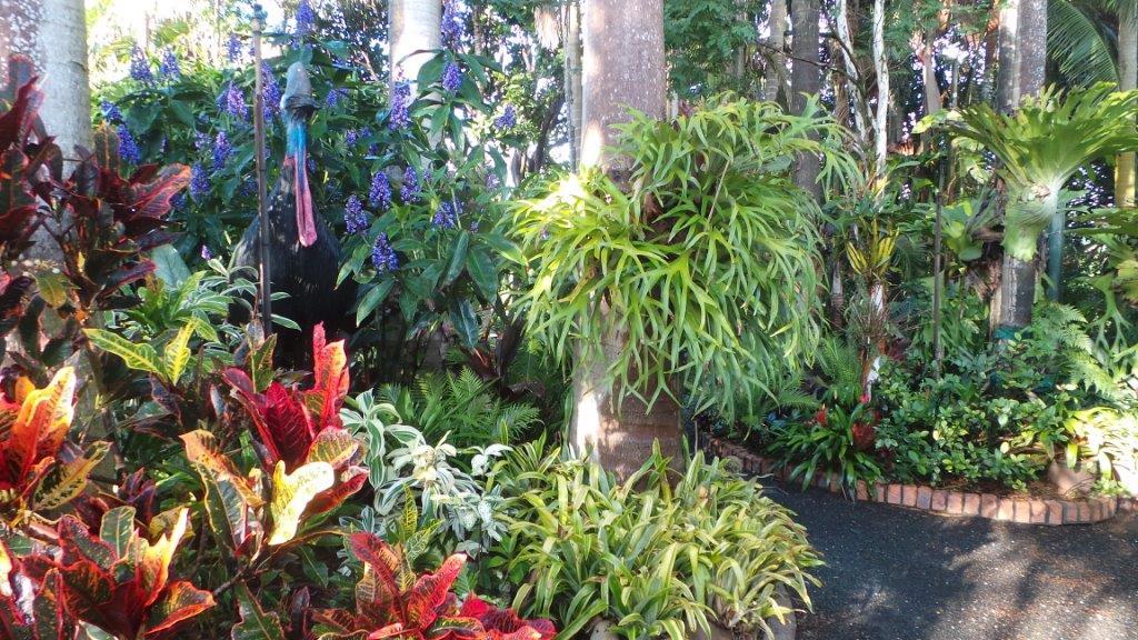 Rainforest Wedding At Joncia Gardens Brisbane